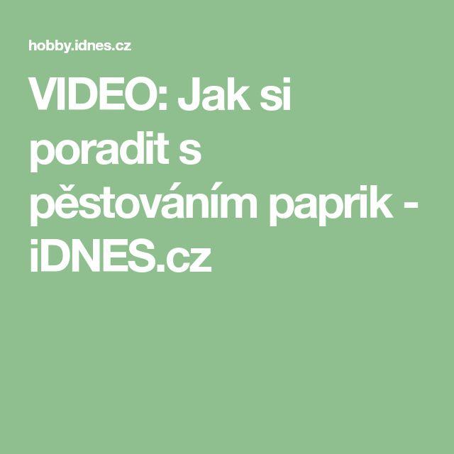 VIDEO: Jak si poradit s pěstováním paprik - iDNES.cz