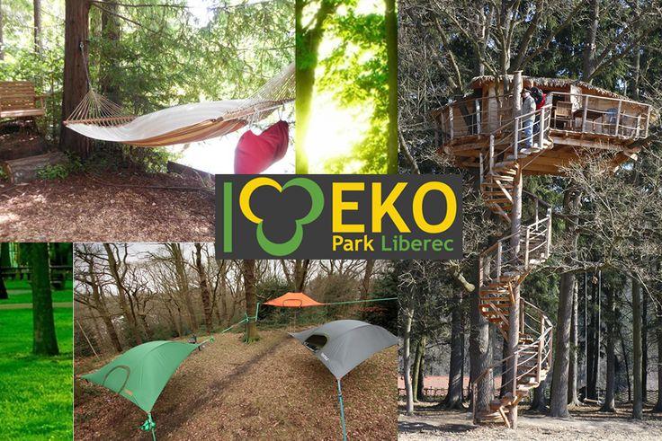EkoPark Liberec vzniká na území, které je léta zanedbávané a najdeme tam spousty plevele, náletových dřevin nebo i odpadky.