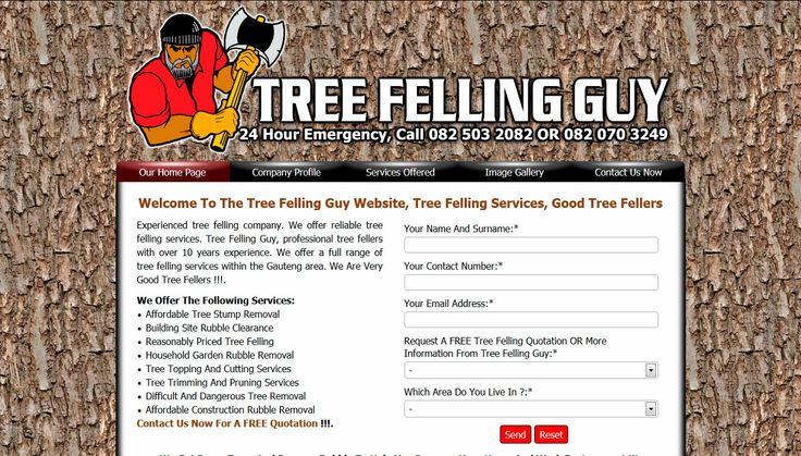 Experienced tree felling company. We offer reliable tree felling services. Tree Felling Guy, professional tree fellers with over 10 years experience. Visit http://www.treefellingguy.co.za