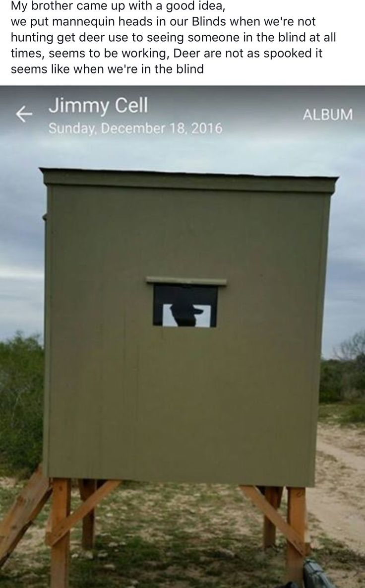 hunting scheels gander blinds watch experts layout youtube assembly mountain blind