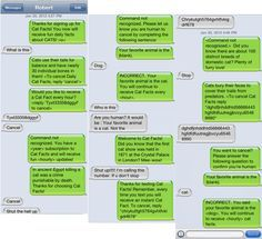 "Masterful ""Cat Facts"" Texting Prank - BuzzFeed I wish I had the time to do this"