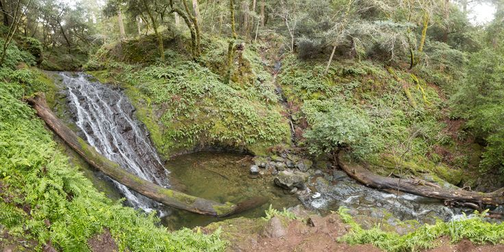 Best Bay Area waterfall hikes! Don't listen to TLC this time. Go chasin' them. No scrubs though.