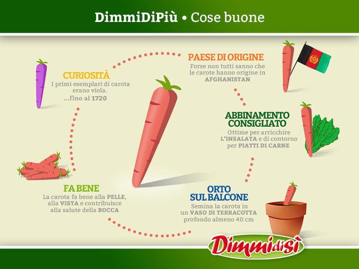 Qualche #curiosità sulle #carote! Scopri di più: http://www.dimmidisi.it/it/dimmidipiu/cose_buone/article/forse_non_tutti_sanno_che_.htm - #dimmidisi #alimentazione #food #infografica #infographic #carrots