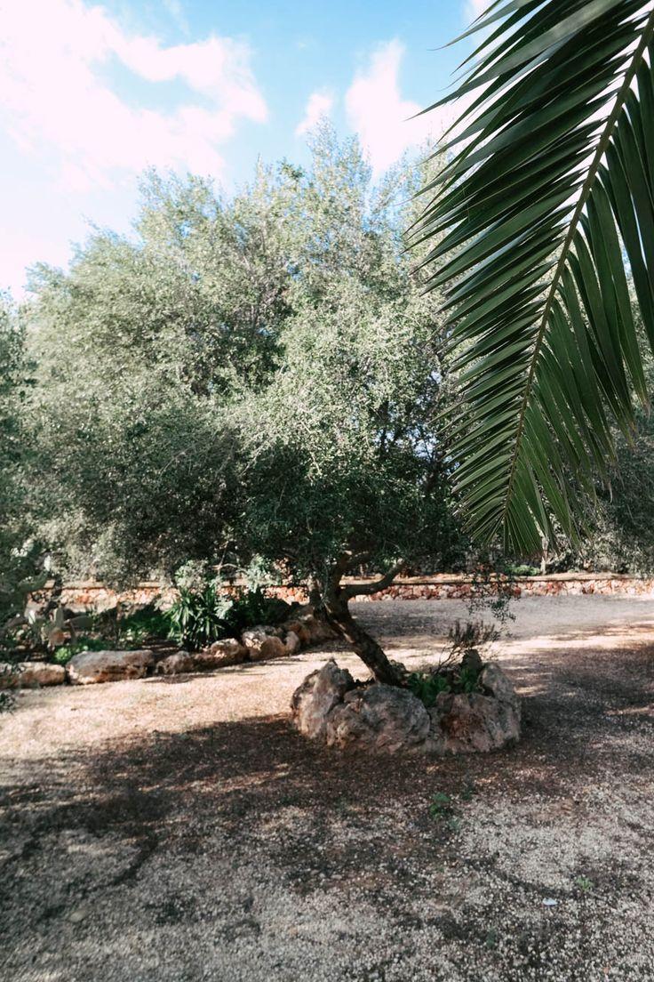 Elternzeit auf Mallorca