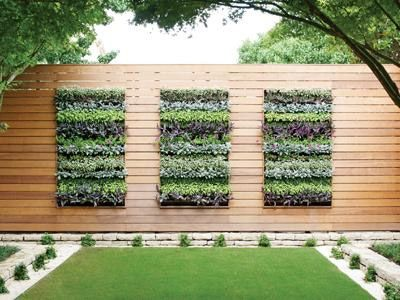 Vertical Garden gutter | Rain Gutter Vertical Garden. Image Source: Today's Garden Centre