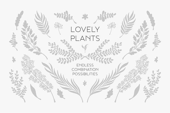 Lovely Plants package by mky on @creativemarket