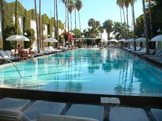 Google Image Result for http://media-cdn.tripadvisor.com/media/photo-s/01/57/75/7a/cool-pool.jpg