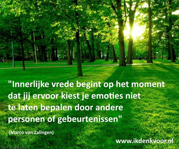 """Quote: """"Innerlijke vrede begint op het moment dat jij ervoor kiest je emoties niet te laten bepalen door andere personen of gebeurtenissen"""" (Marco van Zalingen) www.ikdenkvoor.nl"""