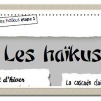 Free downloadable resources. Activities exploring Haiku in French. #Haiku #MTOT #French