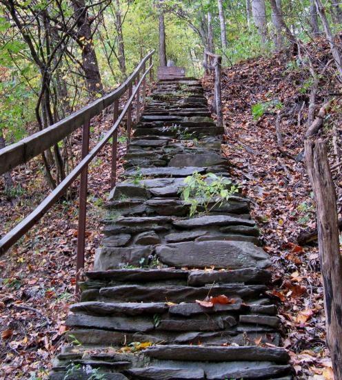 fairegarden blog shared these steps- adventure lies ahead.