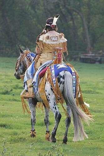 Appaloosa and Native American