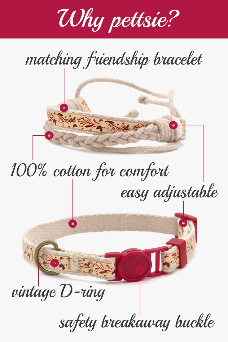 Red Kitten Collar With Safety Breakaway Buckle And Friendship Bracelet For You Kitten Collars Friendship Bracelets Cat Collars