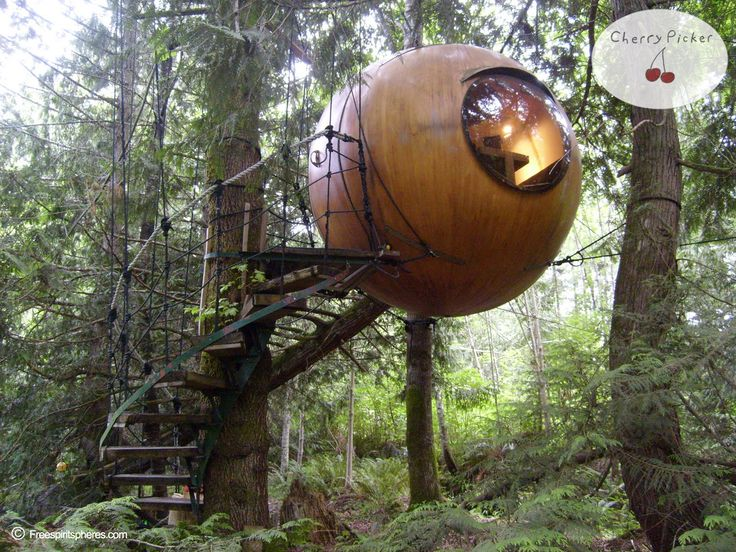 Toe aan een digital detox?  Verblijf in een van de huisjes van de The Free Spirit Spheres in Vancouver Eiland. Een kolfje naar onze hand!  Ready for a digital detox? Stay in one of the cottages of The Free Spirit Spheres in Vancouver Island!