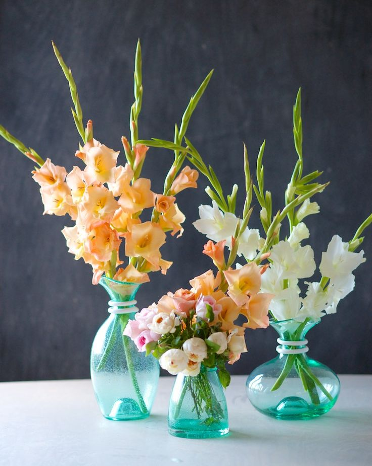 The Glorious Gladiolus | Simple centepiece DIY with Gladioli | Tulipina.com