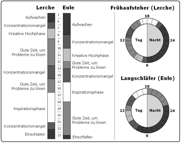 Chronophasen - Chronobiologie: Wie Sie Ihre innere Uhr besser nutzen