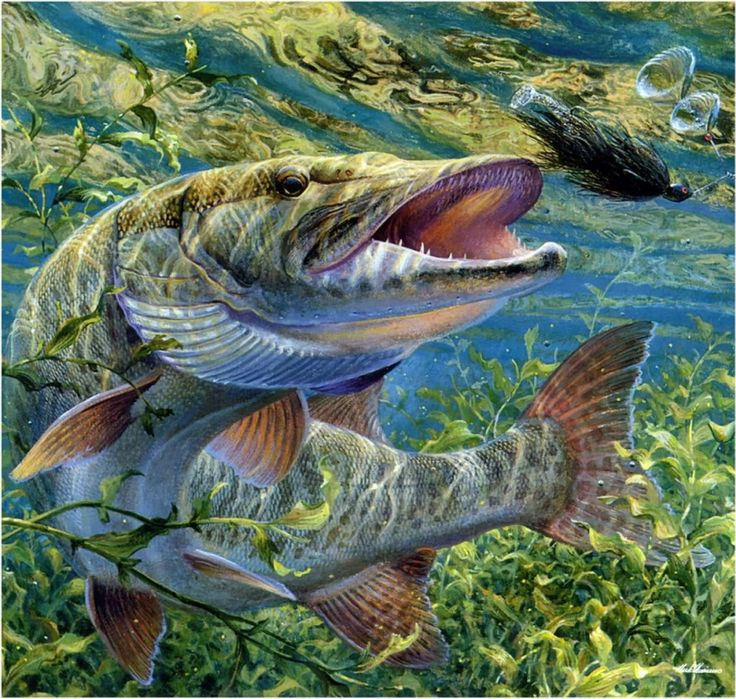 картинки на телефон про рыбалку того