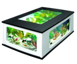 Table basse aquarium Aquatlantis : aucune garçonnière se serait complète sans un objet de décoration.