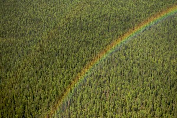 http://gabrielquerviajar.com.br/2012/01/planetovski-russia-komi/