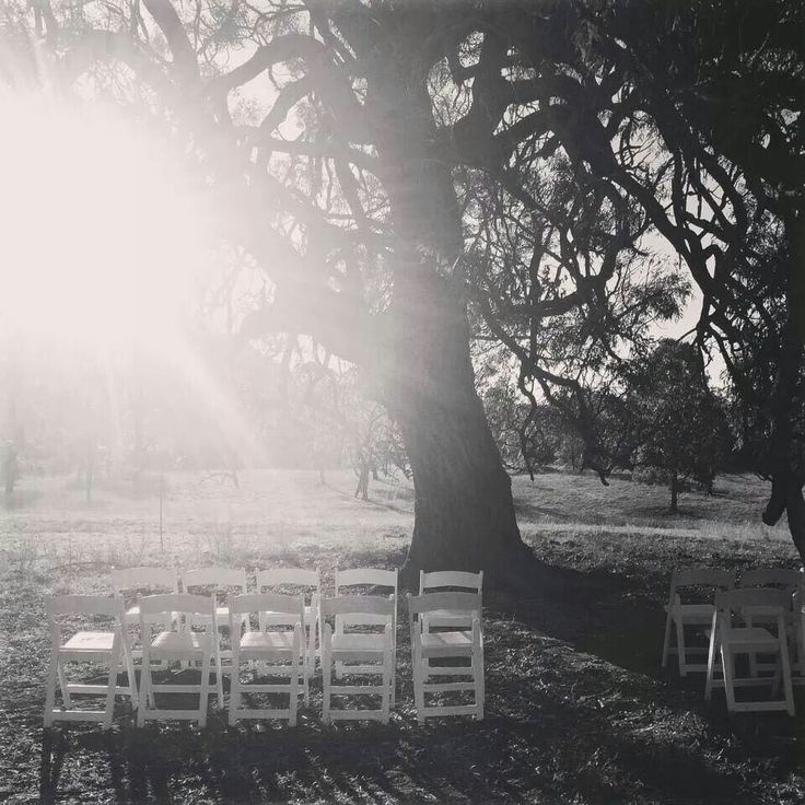 The Tree @ Adams Peak & The Barn - our new ceremony option