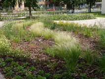 Der Villa-Bauer-Garten neben dem Enzkreis-Pavillon