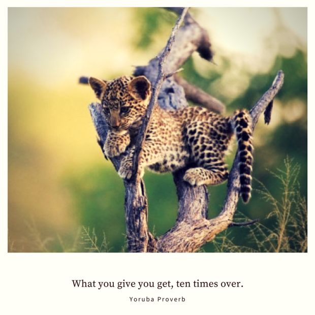 What you give you get, ten times over. – Yoruba Proverb