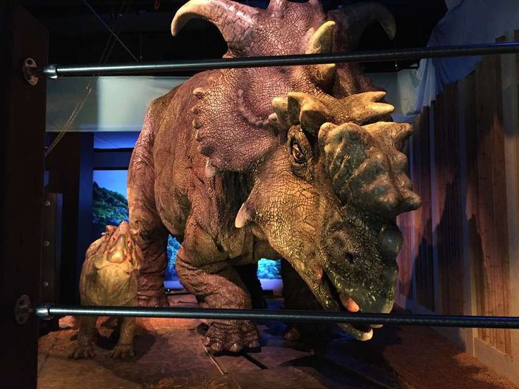 Dinosaurs in museums tend to be of the fossilized variety, but a new exhibit in Philadelphia is bringing the creatures and their world to life.