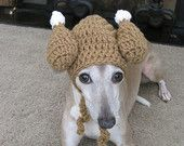 Pet Turkey Hat - Dog or Cat Turkey Thanksgiving Autumn Hat