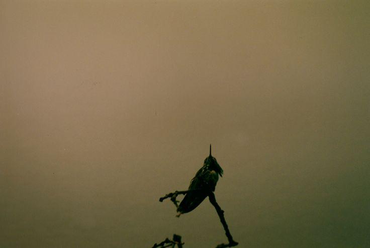 Sombre | Tiblog