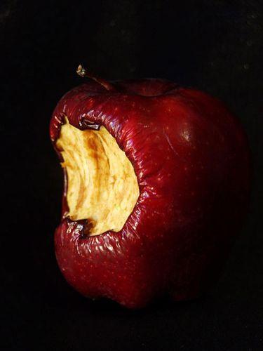 Goldfishdreams Photography, Still Life, Rotten Apple, Apple, Poison Apple, Red Apple, Bitten, Bite