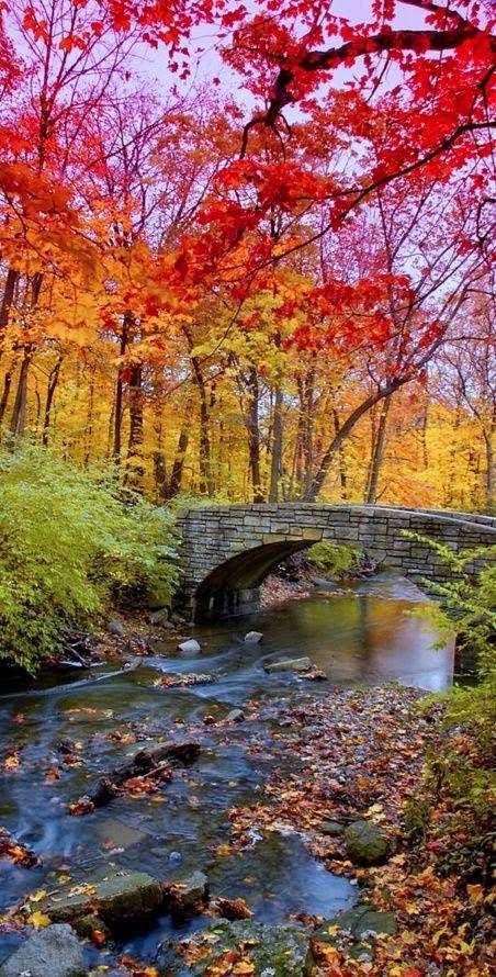 Autumn ~ Corvallis, Oregon