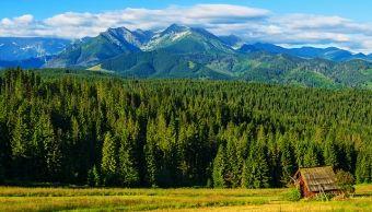 Bukowina Tatrz.: Blisko Term, Stoków, Atrakcji