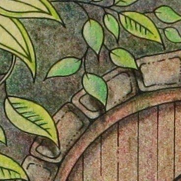 17 Best Ideas About Secret Garden Colouring On Pinterest