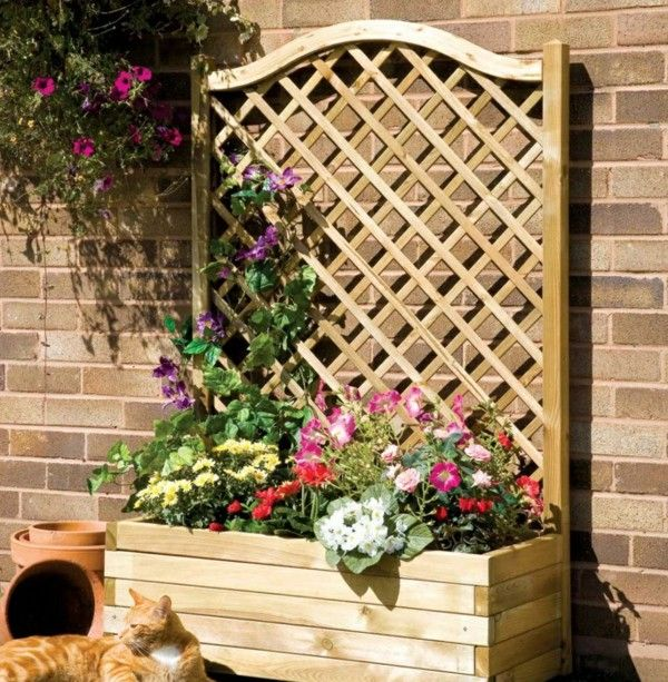 How To Decorate Garden Brick Wall 5 Ideas To Make It: 25+ Best Ideas About Wall Trellis On Pinterest