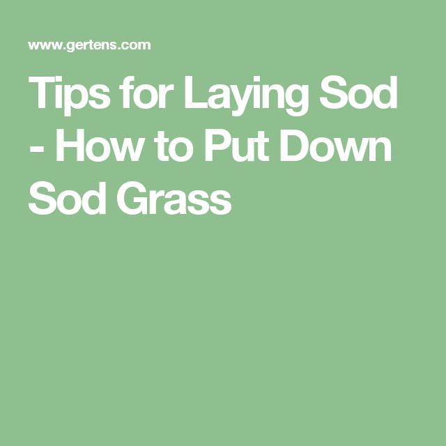 Tips for Laying Sod - How to Put Down Sod Grass