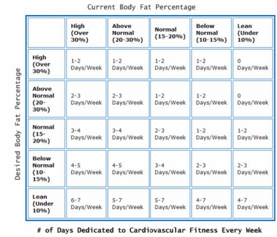 194 Best Fat Buring Exercise For Women Images Rh Com Arm Workouts Cardio Workout Plan