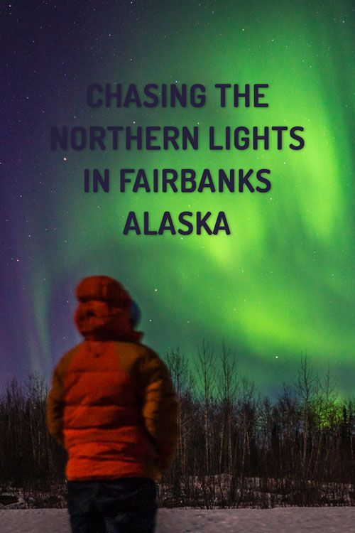 Is seeing the Northern Lights on your bucket list? Here's everything you need to know about seeing the Aurora Borealis in Fairbanks, Alaska...