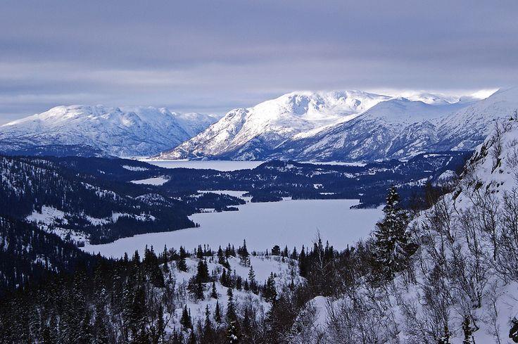 Lognvikvatn, Telemark