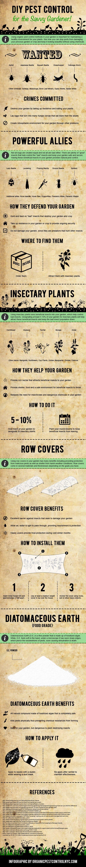 DIY Pest Control for the Savvy Gardener! #infographic #DIY #PestControl #Gardening
