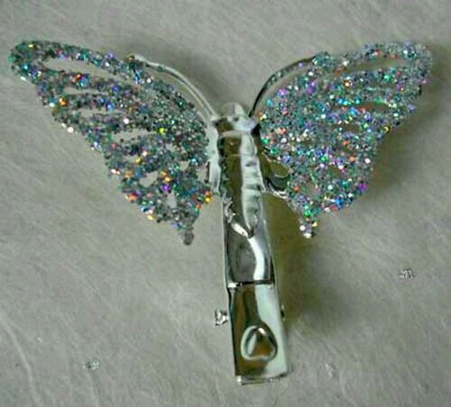 Young & old sported these glittery sparkle butterfly hair clip in the mid to late 90's. This is just like the one I had.  G;)