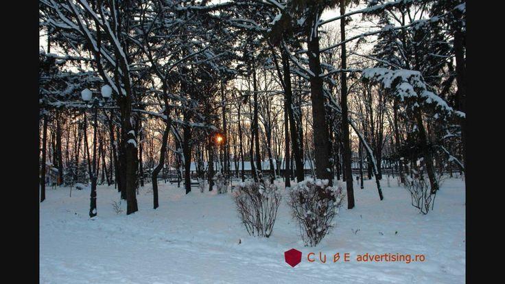 Fotografii Iasi - Iarna (Iasi - Winter Photos )