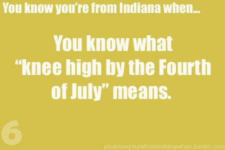 ha and I know that if its a bumper crop it better be way taller than knee high by the 4th of July!