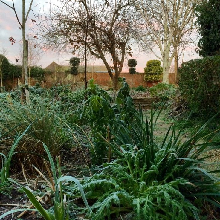 A year of glorious gardens to visit