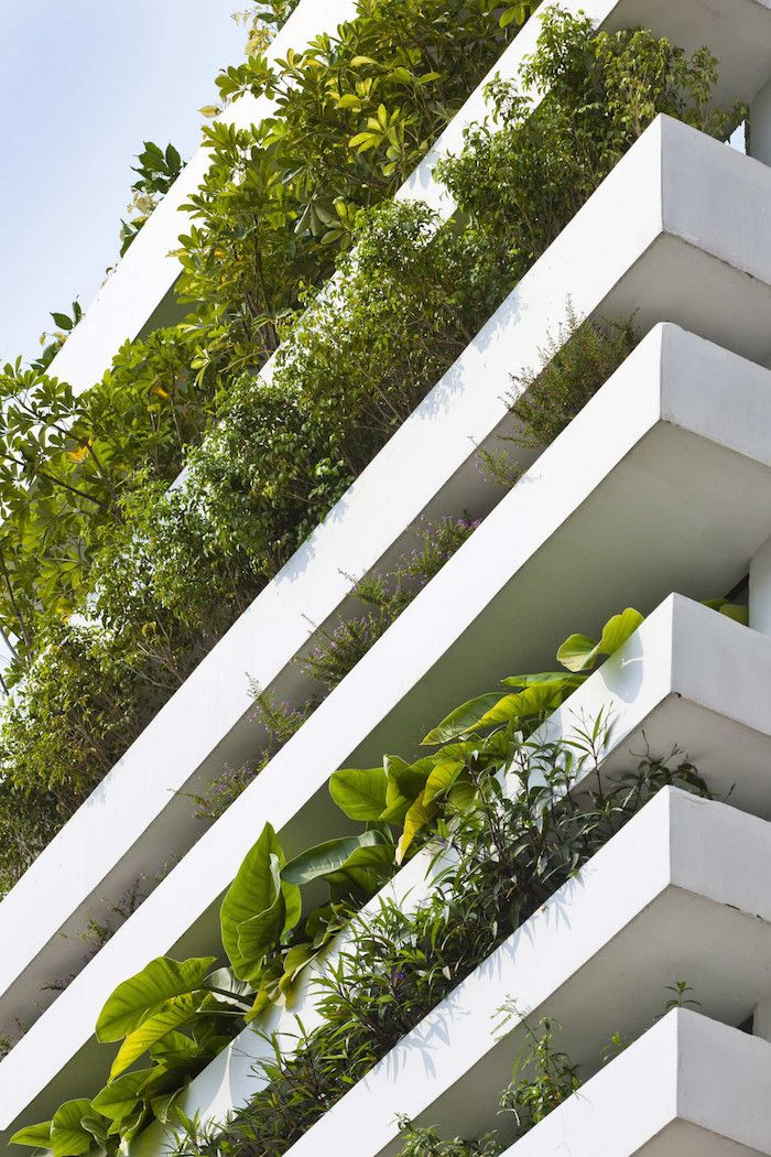 A Concrete House With A Vertical Garden In Vietnam | iGNANT.com