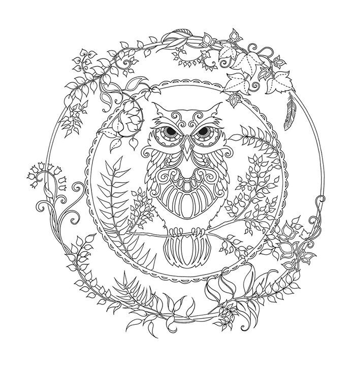 111 best adult coloring animal pages images on pinterest ... - Animal Mandala Coloring Pages Owl