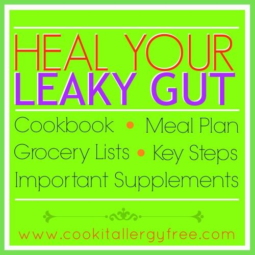 A simple and easy-to-follow guide to Heal The Gut. Soothing recipes, supplement help, meal plans, and shopping lists.
