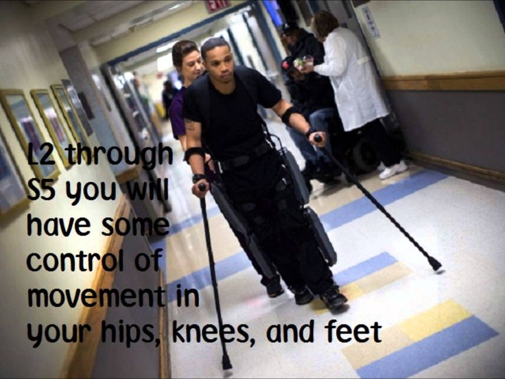 Spinal cord injury levels song>>> See it. Believe it. Do it. Watch thousands of spinal cord injury videos at SPINALpedia.com