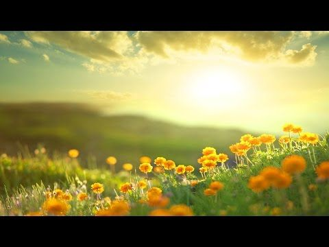 Relaxing Guitar Music for Children | Stress Relief and Meditation | Be Happy! - YouTube