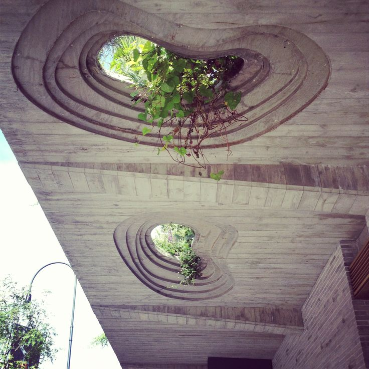 Steep Slope House Design Goes Vertical Just Like Trees: Best 25+ Green Roofs Ideas On Pinterest