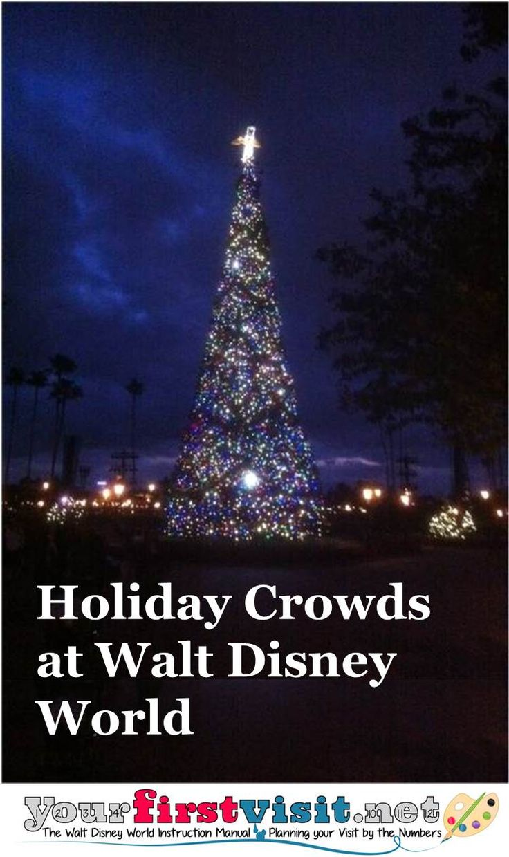 97 best WDW Holidays & Special Events images on Pinterest | Disney ...