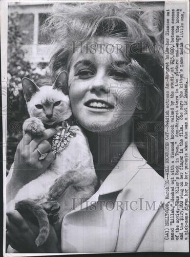 "1965 Press Photo Swedish Actress Ann Margaret with her Siamese Cat ""Lilliian""."